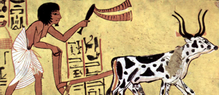 A plowing farmer - from a burial chamber of Sennedjem