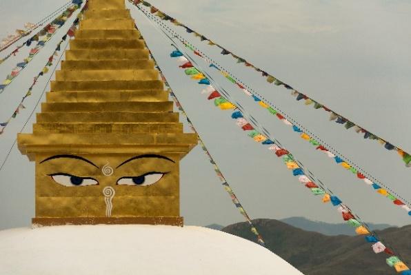 Buddha's eyes.