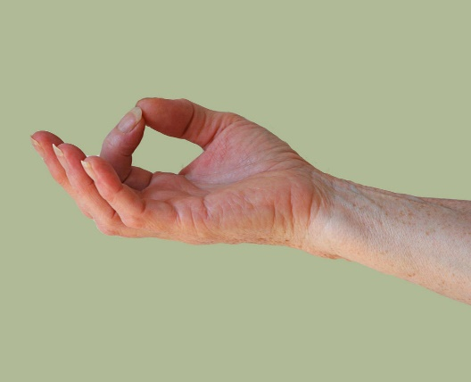 Indian hand gesture of wisdom.