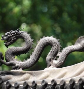 Chinese dragon - symbol of strength.