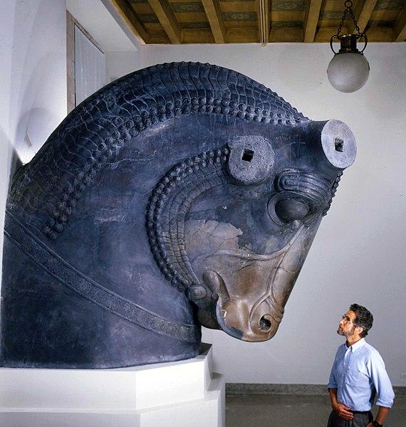 Colossal Bull Head