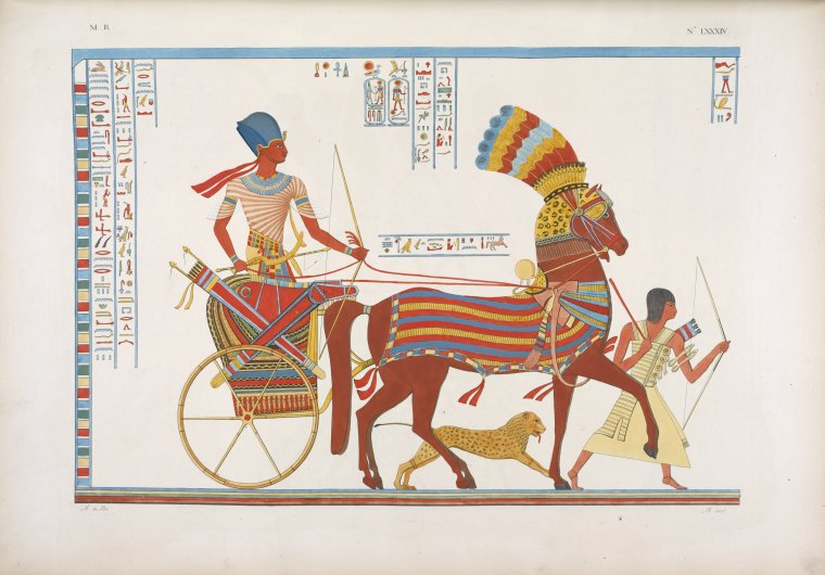 Egyptian chariot.