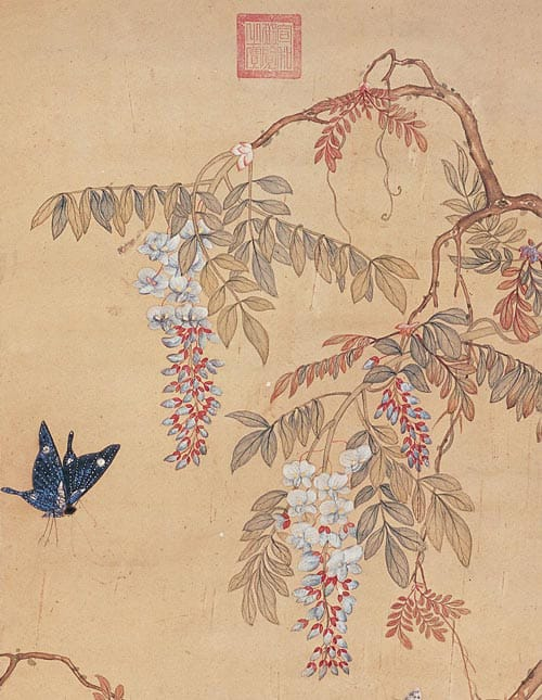 A 10th century drawing of a butterfly and wisteria flowers from an old Chinese book.