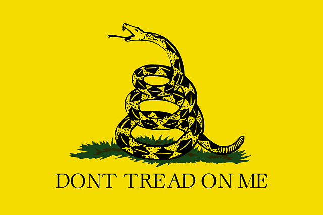 Don't tread on me flag / Don't step on the snake.
