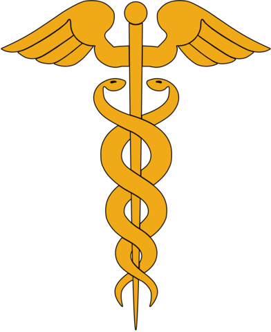 Caduceus / A symbol of the winged rod.