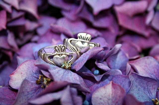 Claddagh rings among purple hydrangeas.