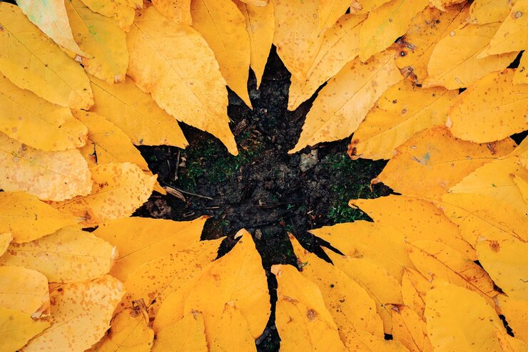 Faux autumn leaf formed with autumn leaves.