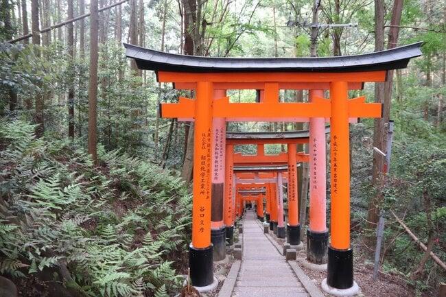 Torii / Orange Japanese gate.